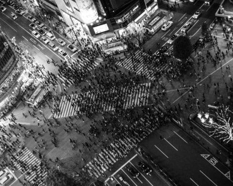 trafik-tabanli-kent-egitimi